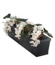 phalaenopsis casket spray